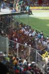 8 PNG Crowd